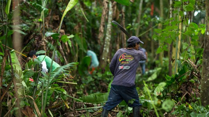 Forests emission Migration and Forest Project Peru Photo by Marlon del Aguila Guerrero CIFOR