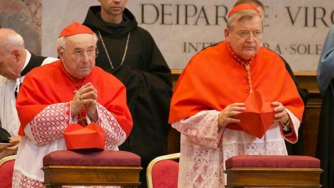 cardenales-brandmuller-burke_2156194419_13890232_660x371